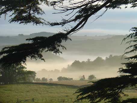 Burnlaw farm and West Allen Valley, view from the studio